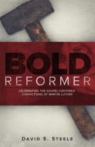 Bold Reformer - d5